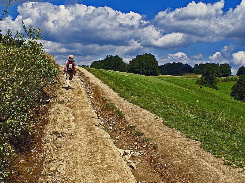 Szlaki piesze